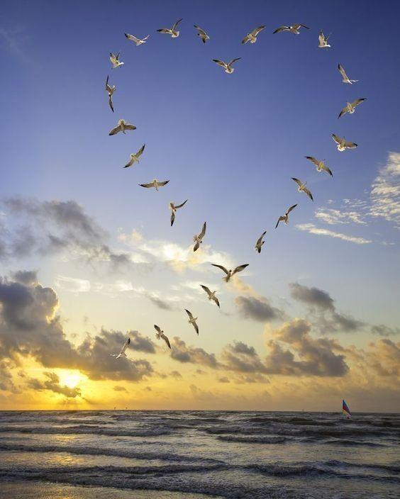 """Résultat de recherche d'images pour """"centerblog belle image de soleil"""""""
